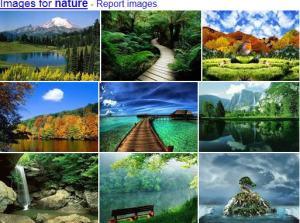 Nature's landscape